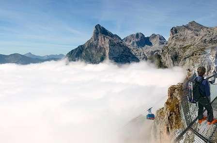 Oferta limitada: Escapada con cena y visitas con cata en Los Picos de Europa (desde 2 noches)