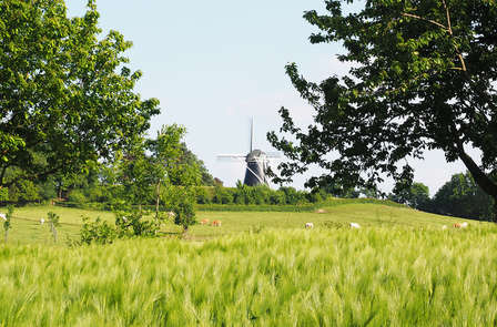 Rust in Belgisch Limburg en beleef Maastricht vanaf het water