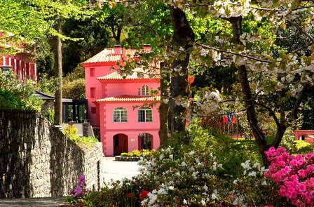 Zomerspecial: ontspanningsweekend met dagelijks diner in Madeira (vanaf 3 nachten)