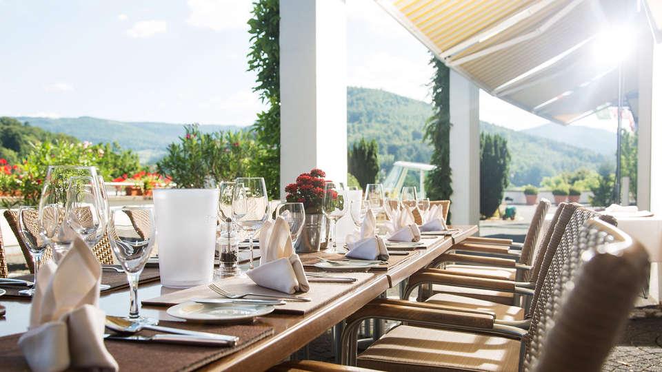 Schwarzwald Panorama - EDIT_restaurant3.jpg