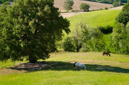Tra le verdi colline umbre a due passi dalla Toscana