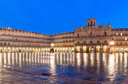 Conoce Salamanca con visita a una almazara y degustación de aceite de oliva