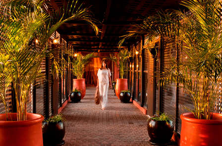 Oasis de bien-être sous le soleil de Marrakech