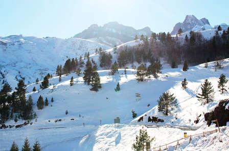 Ski à Candanchú : séjour avec forfait et accès au spa en Jacétanie
