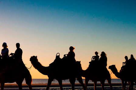 Romanticismo con paseo en camello por el Parque de Doñana