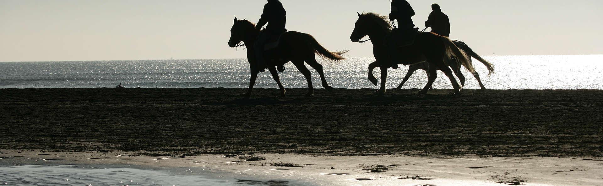 Auberge Cavalière du Pont Des Bannes  - edit_horse_riding_beach.jpg