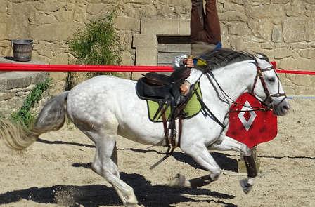 Séjour dans un château à Andrezé avec entrée au Puy du Fou