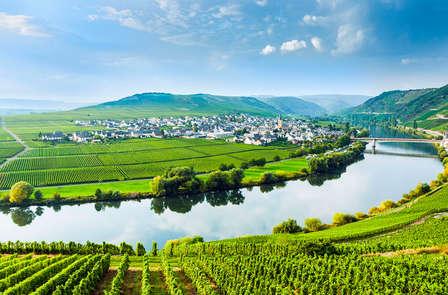 Ontdekkingsweekend met wijnproeverij dichtbij Trier (vanaf 2 nachten)
