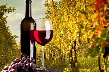 Escapada Enológica: Visita a 2 bodegas con cata de vinos Navarros