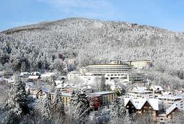 Schwarzwald Panorama -