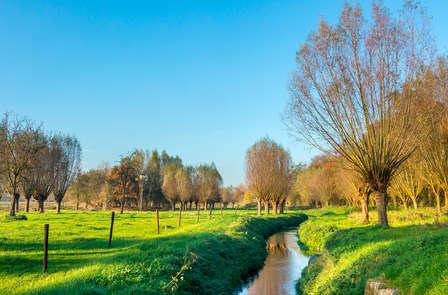 Ontdek de prachtige Limburgse natuur op de fiets (vanaf 2 nachten)