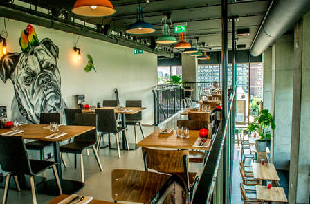 Stedentrip met 3-gangen diner in Groningen (vanaf 2 nachten)