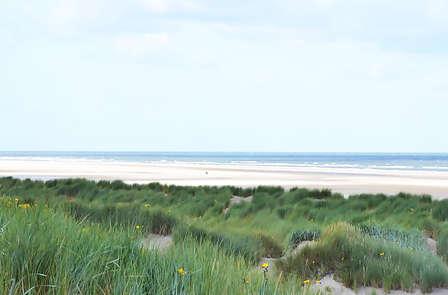 Weekendje weg in Burgh Haamstede dichtbij schitterend duingebied