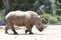 Zoo de La Barben -