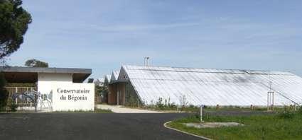 Conservatoire du Bégonia