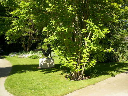 Arboretum Gaston-Allard