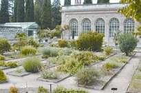 Jardin des plantes de Montpellier -