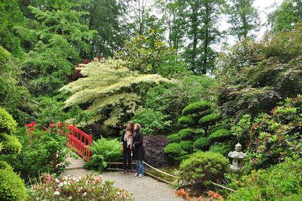 Jardin botanique de Haute-Bretagne
