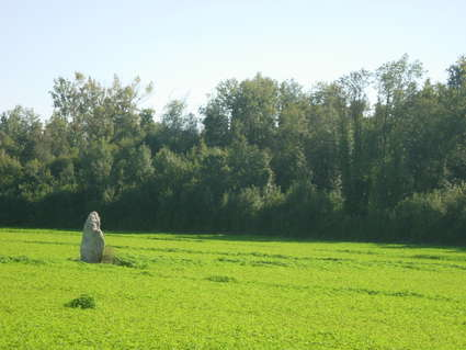 Menhir de la Grande-Pierre