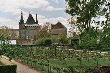 Château de Talcy
