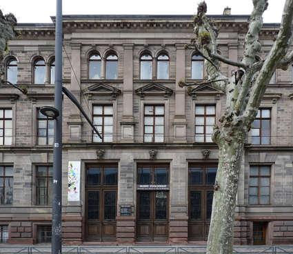 Musée zoologique de la ville de Strasbourg