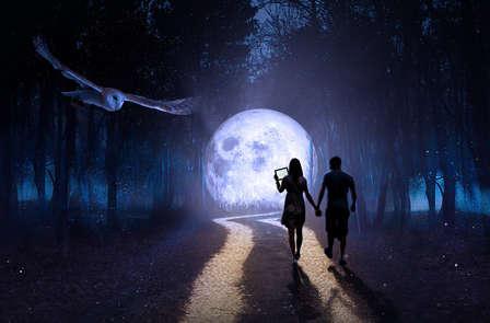Ontdek de nachtelijke mysteries van landgoed Biesen