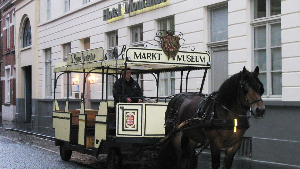 Montanus Hotel - EDIT_horse.jpg