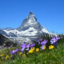 Arrangementen in de Alpen