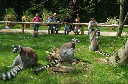 Découvrez le Zoo de la Bourbansais et profitez d'une escapade gourmande à Rennes ( 2 nuits min )