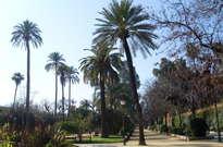 Jardines de Murillo -