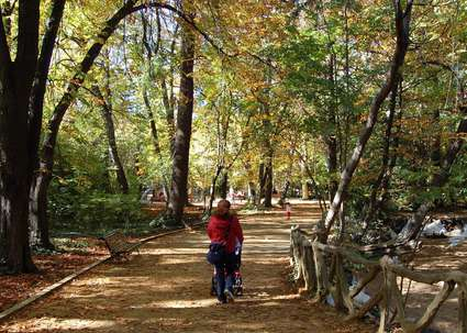 Parque del Campo Grande