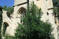 Real monasterio de Nuestra Señora de Fresdelval -