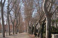 Parque de la devesa de Girona -