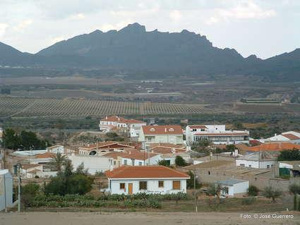 Guazamara