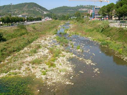 Bormida (rivière)