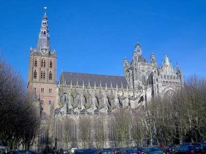 St. John's Cathedral ('s-Hertogenbosch)