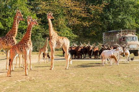 Tour du monde animalier à Planète Sauvage Nantes (à partir de 2 nuits)