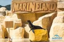 Marineland -