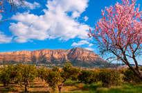 Parque Natural del Montgó -