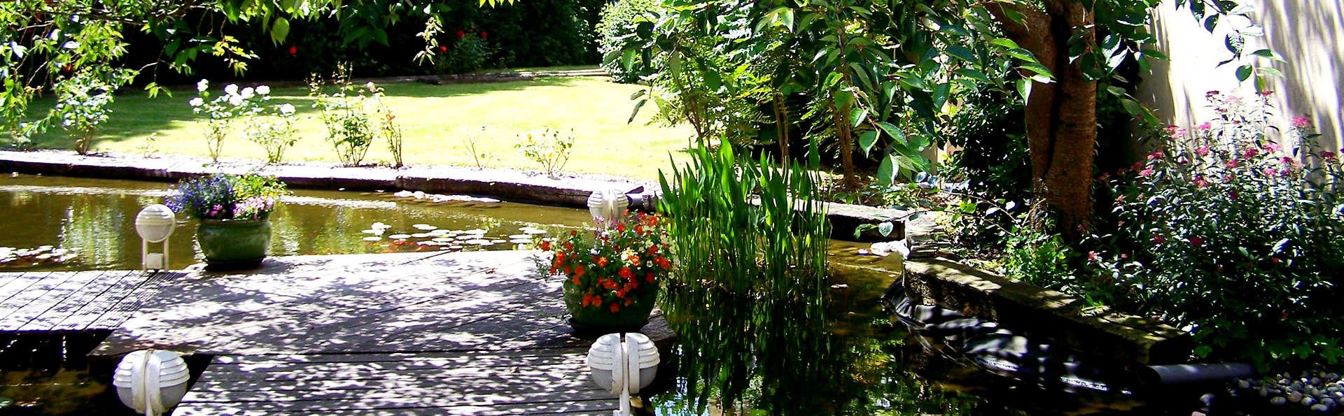 Cositel  - Edit_Garden1.jpg