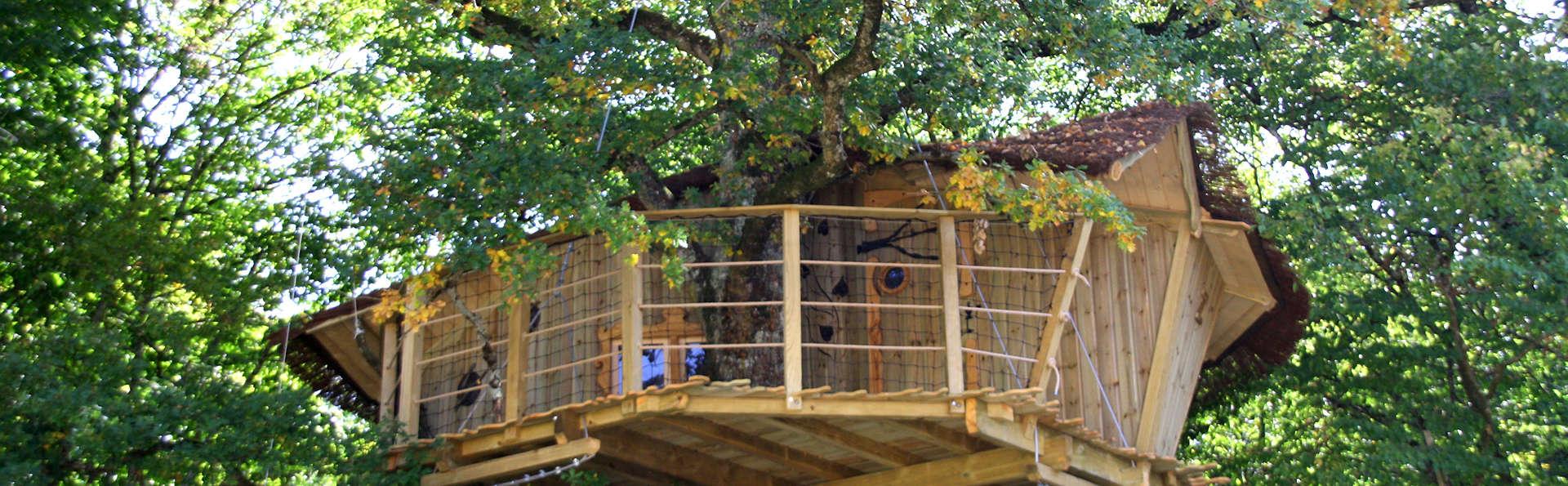 Week-end en famille dans une maison dans les arbres près de Poitiers