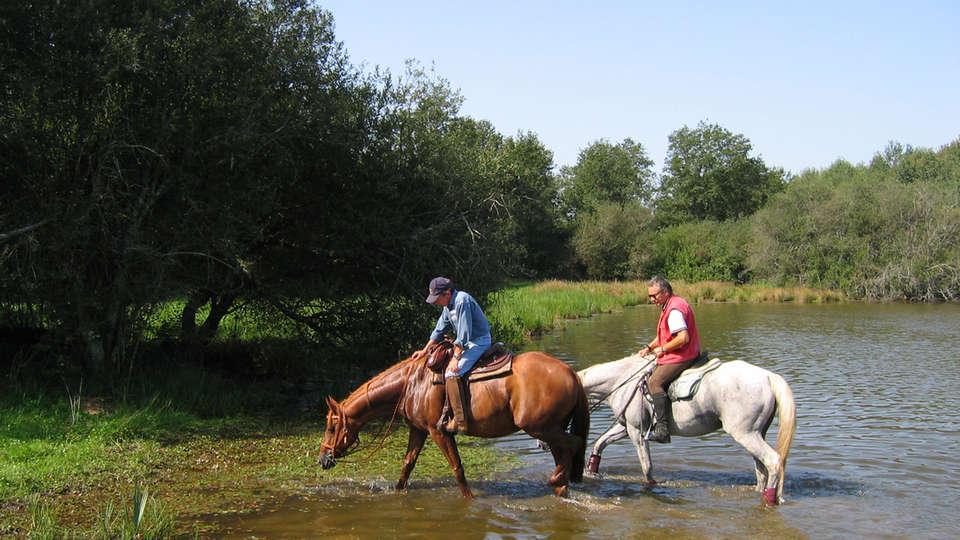 DefiPlanet' à Dienné - EDIT_horses.jpg