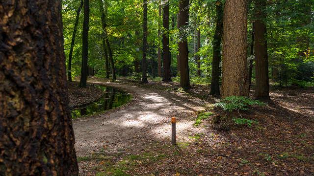 Itinéraires cyclables et pédestres