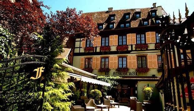 Charmante découverte de Colmar et dégustation au Domaine Martin Jund