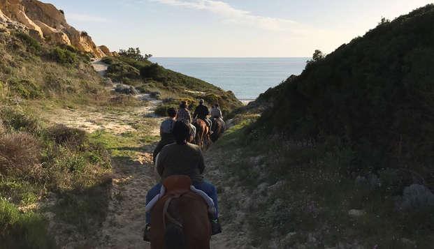 Descubre la magia del Parque de Doñana a caballo y alójate en una magnifica casa rural en El Rocío