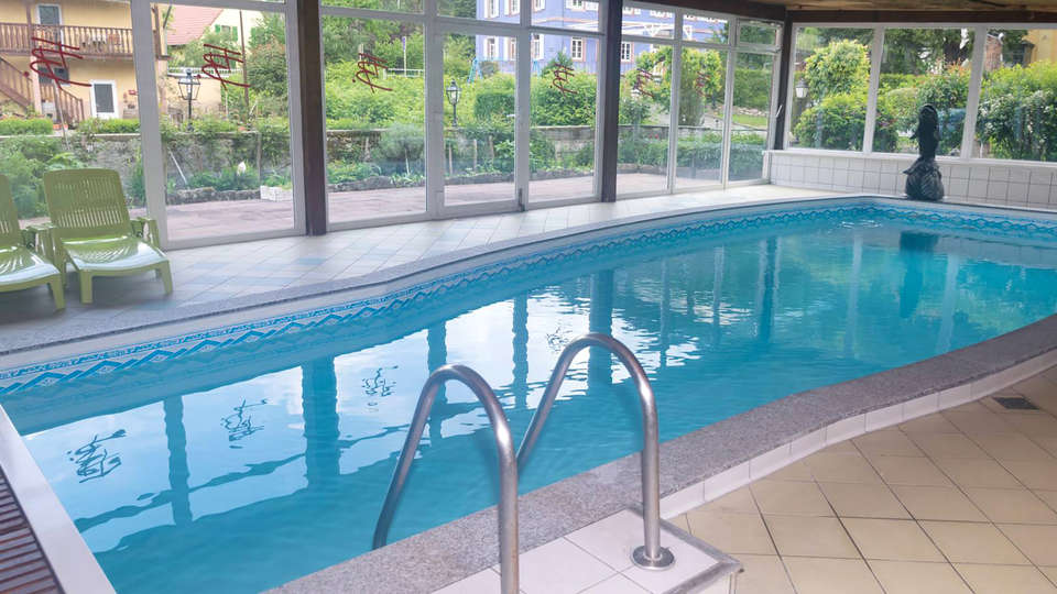 Logis hôtel du Faudé - EDIT_NEW_POOL.jpg