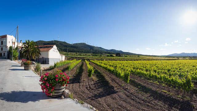 Enoturismo en la tierra del Vino: Vive el relax y la degustación de vinos en Valls (desde 2N)