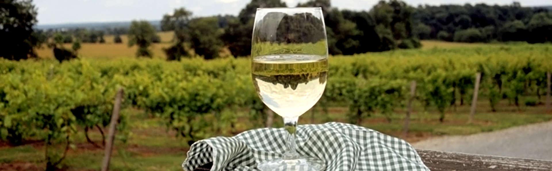 Séjour avec visite et dégustation de vins au Château de Marsannay près de Dijon
