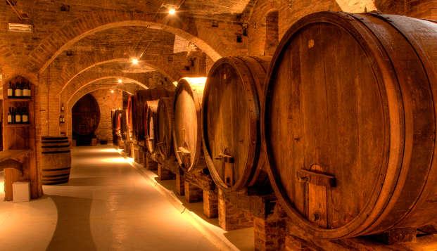 Visite de cave et dégustation de champagne à Reims