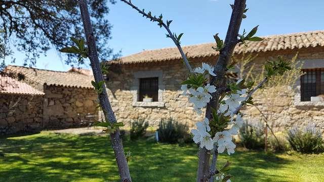 Encanto rural cerca de Sierra de Gredos con desayuno incluido